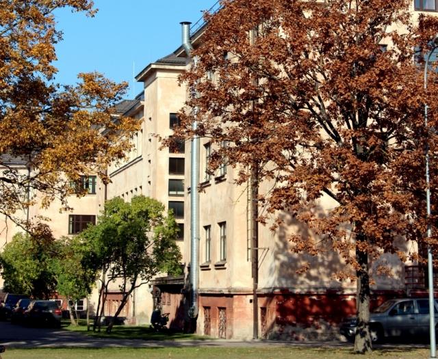 Skolu reitingā pēc eksāmenu rezultātiem augstākā vieta – Jelgavas Valsts ģimnāzijai