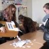 Skolēnu padomes prezidenta vēlēšanas (pielikumā afišas un video)