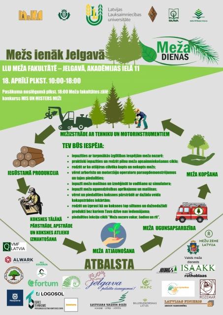 Mežs ienāk Jelgavā